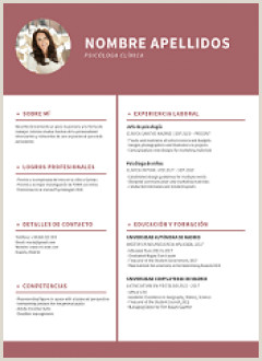 Curriculum Vitae Simples Para Preencher Word Curriculum Vitae formato Word Para Rellenar Gratis