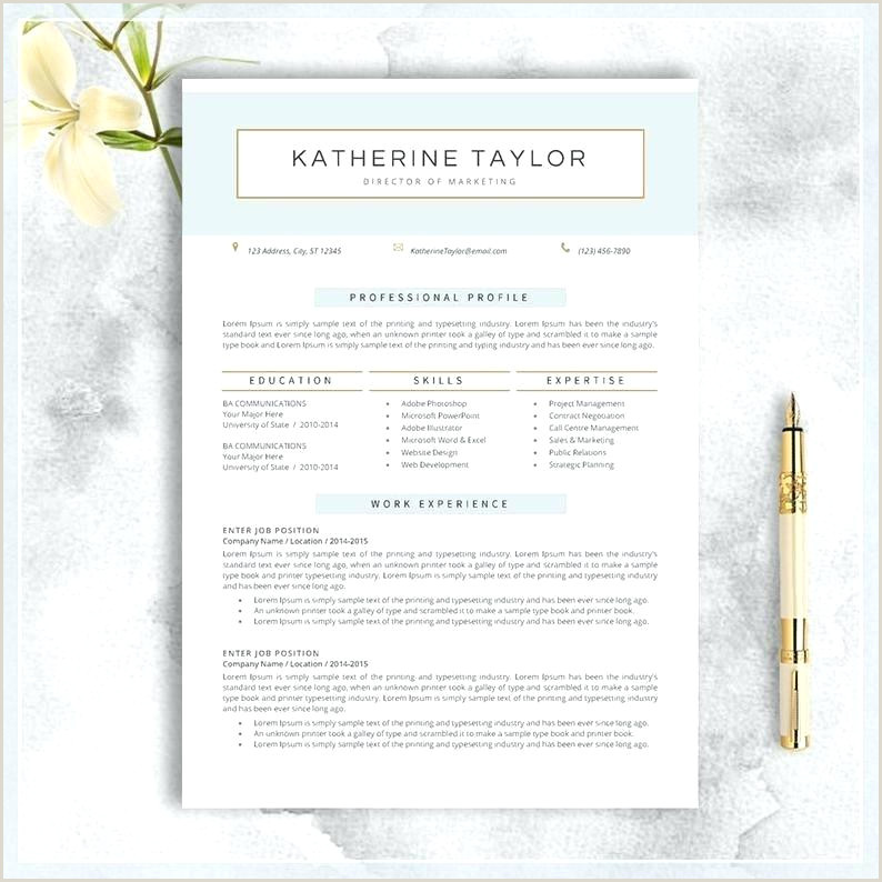 Resume Templates For Mac Free Word Documents Download