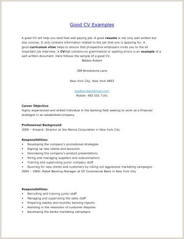 Simple Curriculum Vitae New Simple Curriculum Vitae Template
