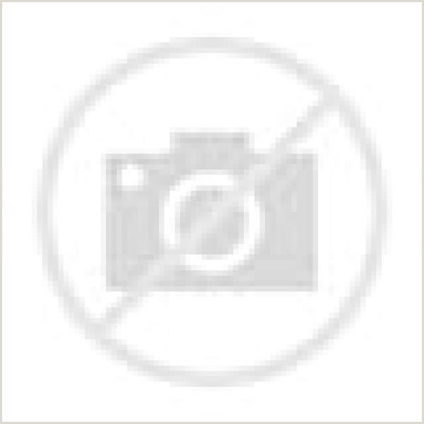 Curriculum Vitae Vacio Para Rellenar Modelo Basico De Plantilla Cv Para Pletar E Imprimir 5