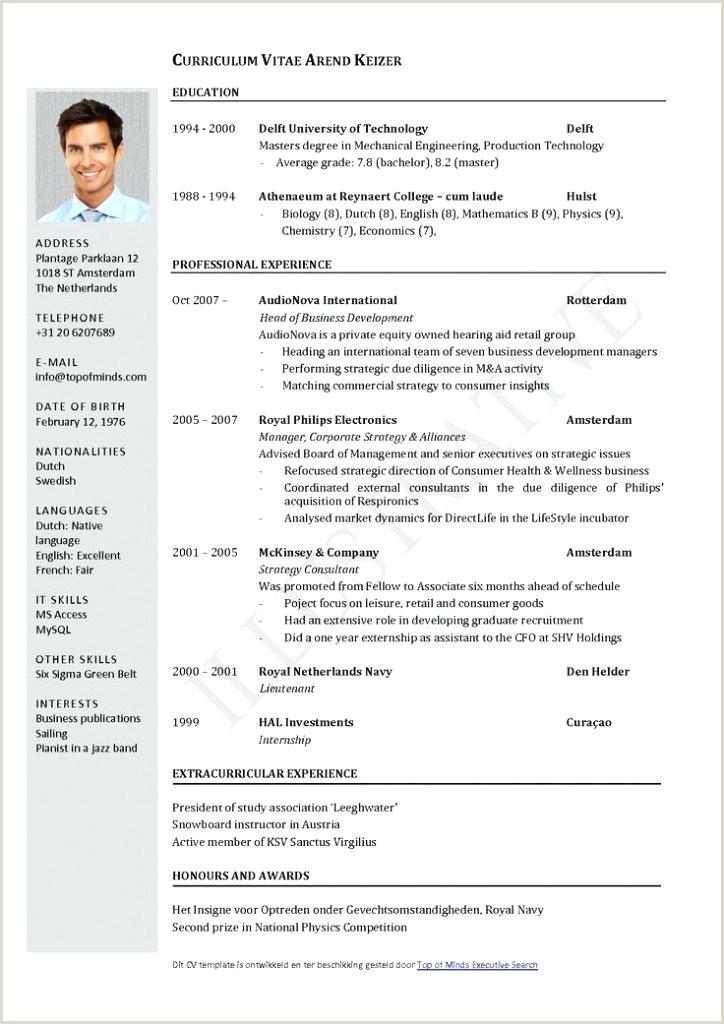 Curriculum Vitae Template Templates Professional English Cv