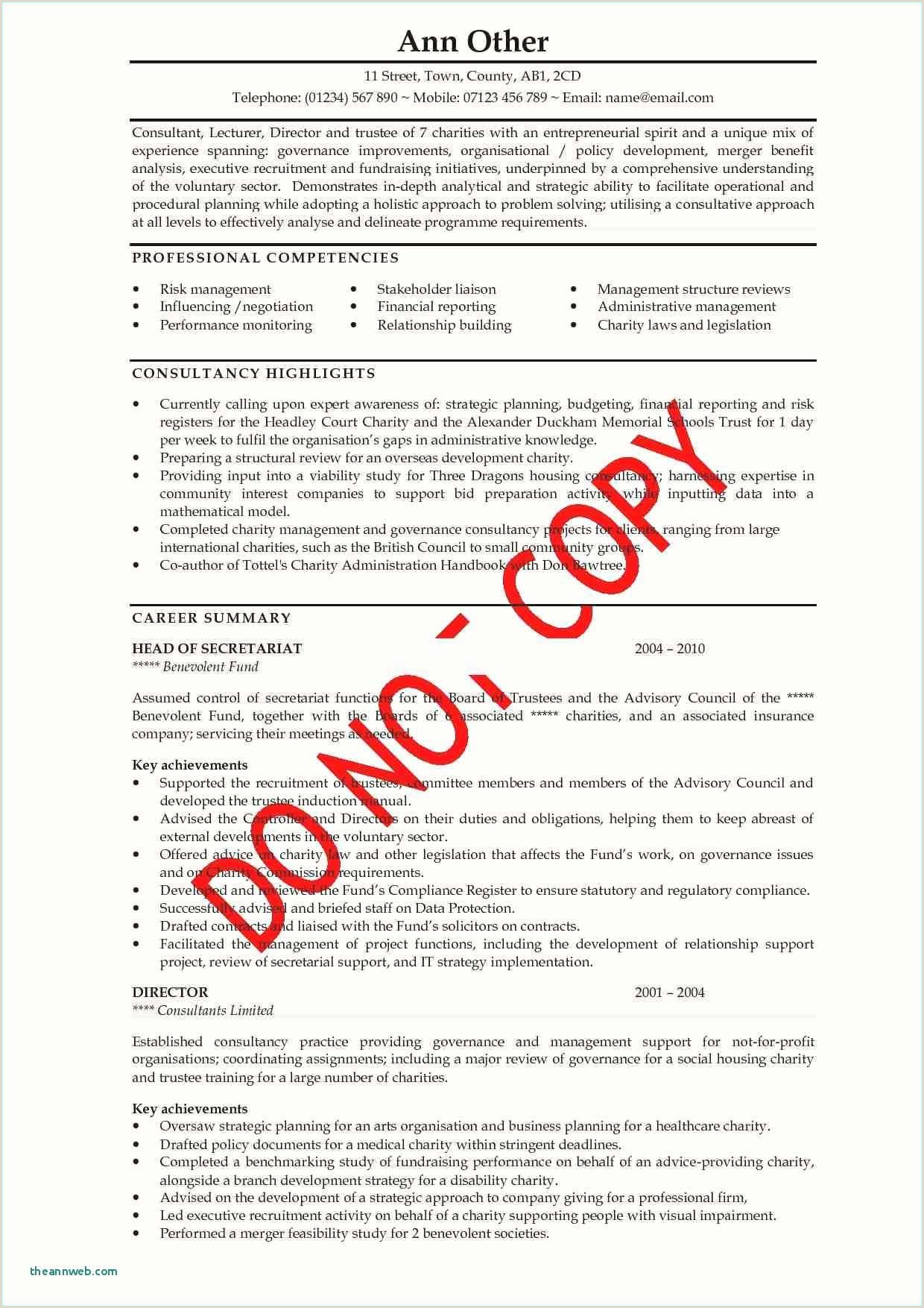 Cv Examples for Job Pdf 15 Resume Examples Pdf