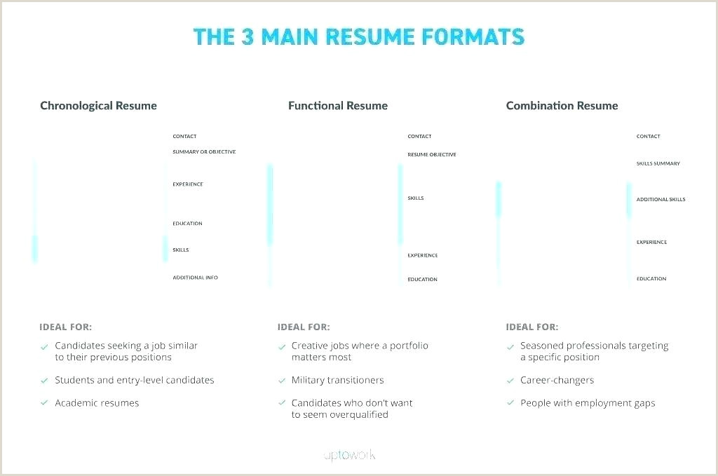 Curriculum Vitae Template Doc Format Doctor Example