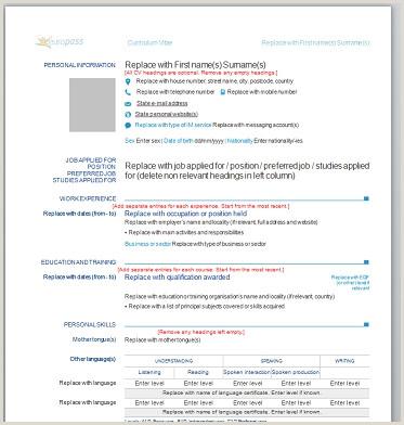 Curriculum vitae european online purchase essays online