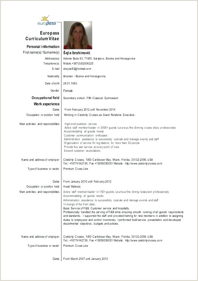 Curriculum Vitae Example Free Template Format Pdf Download
