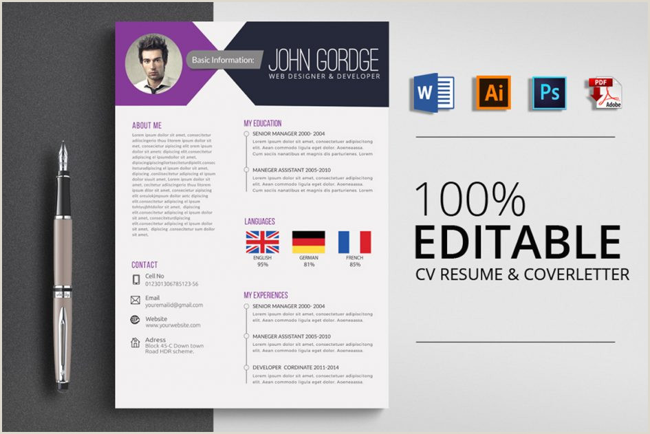 Cv format for Accountant Job In Ms Word Template Professional Cv Template Word Professional Job