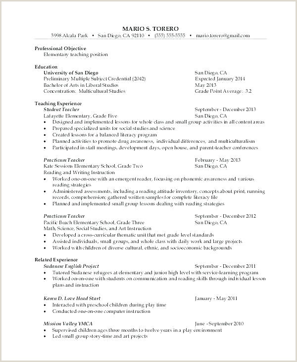 Cv format for Airport Jobs Pdf Employment Resume Template