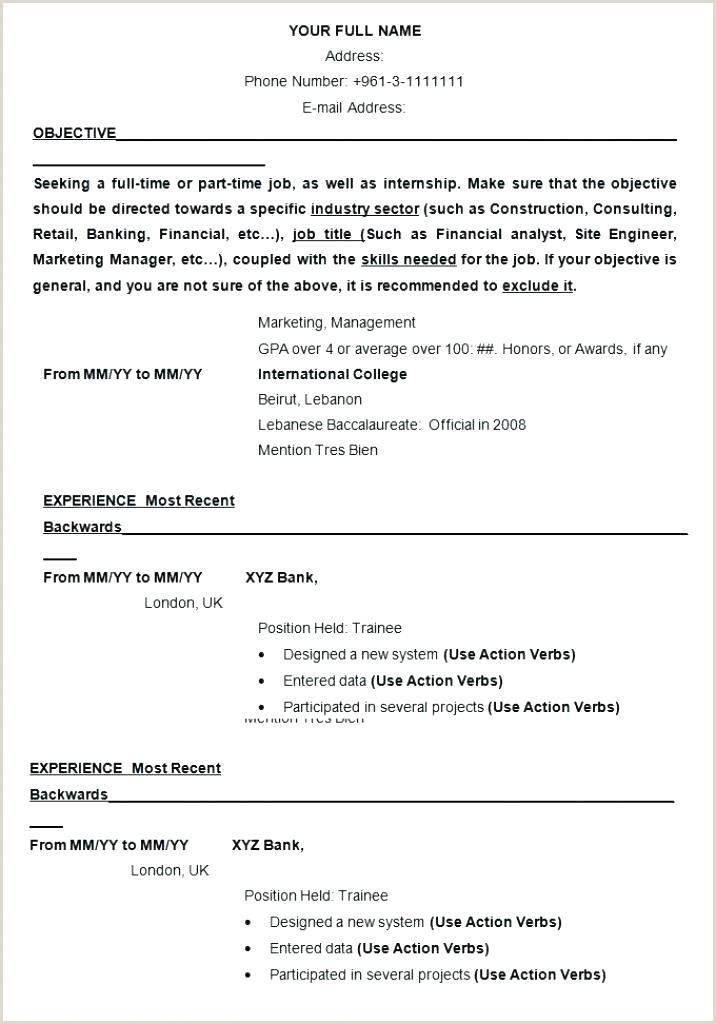Cv Format For Bank Job Pdf International Cv Template