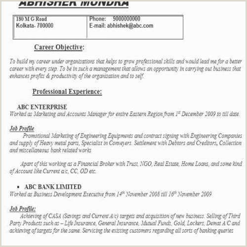 Cv Format For Bank Job Promotional Resume Example Examples Cc A Letter New Cv