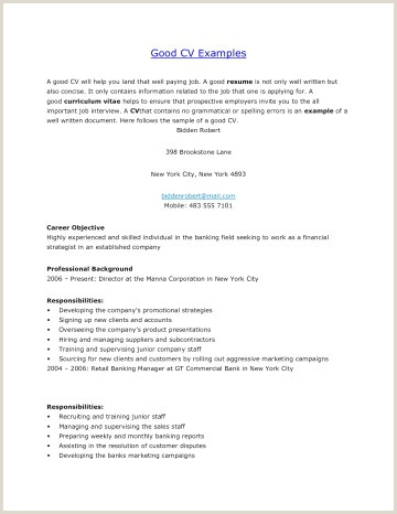 Cv Format For Bank Job Word Curriculum Vitae Template Free Download New Creative Resume