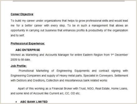 Cv format for Bank Job Word Fotolib