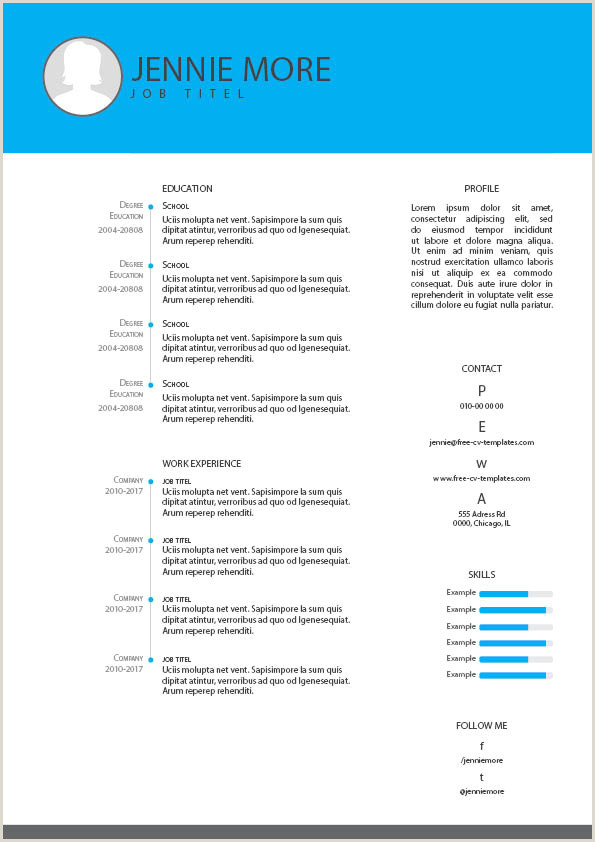 Cv format for Company Job Free Cv and Resume Templates for Indesign Illustrator and
