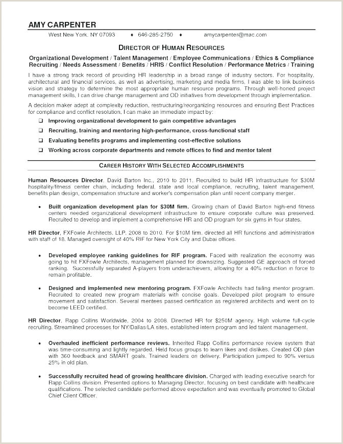 Cv format for Dubai Job Carpenter Job Description Template