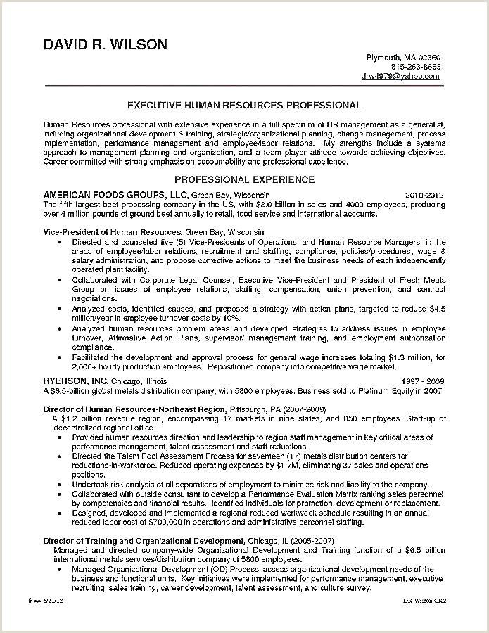 Cv format for Dubai Job Pharmaceutical Resume Template
