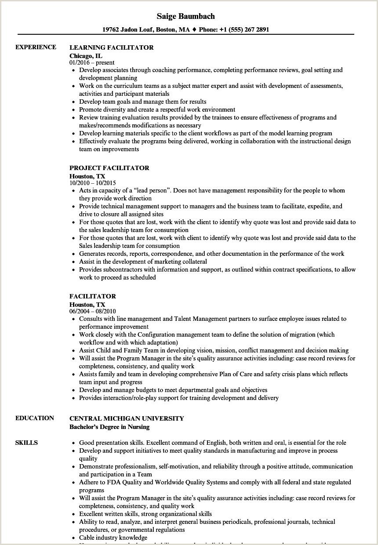 Cv Format For Embassy Jobs Facilitator Resume Samples