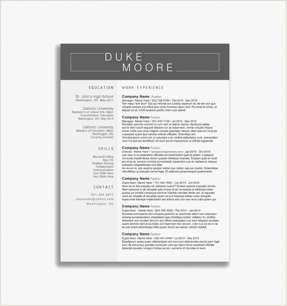 Cv format for Fresher Lecturer 25 Professional Sample Resume formats