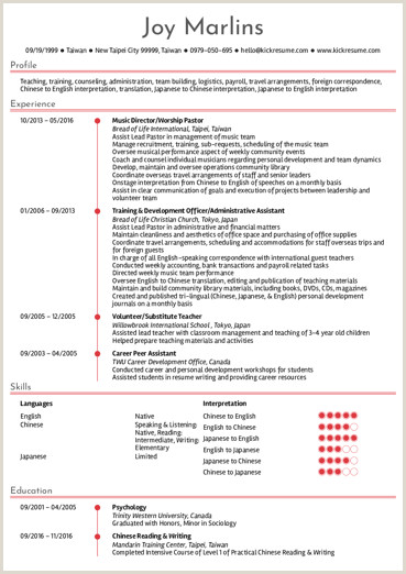 Cv Format For Fresher Lecturer Education Resume Samples From Real Professionals Who Got