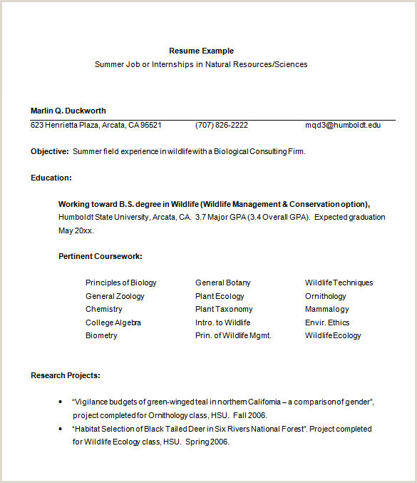 Cv Format For Fresher Student How To Put Current Internship Resume