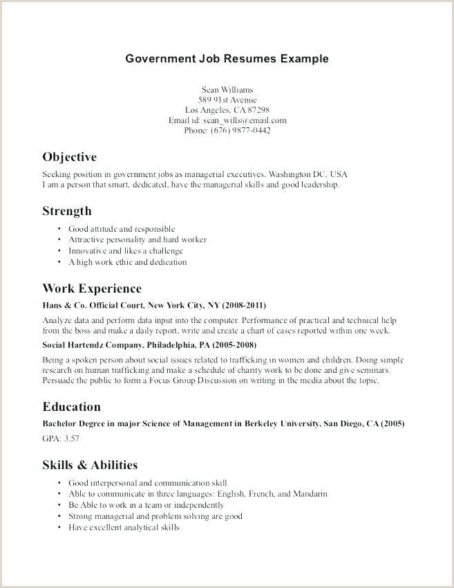Cv format for Government Job Excellent Resume Summary for First Job Resume Design