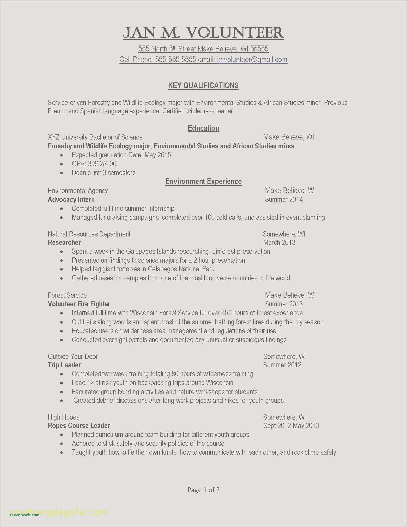 Cv format for Government Job In Pakistan Cv Models Exemple Free Collection 42 Word Cv Template