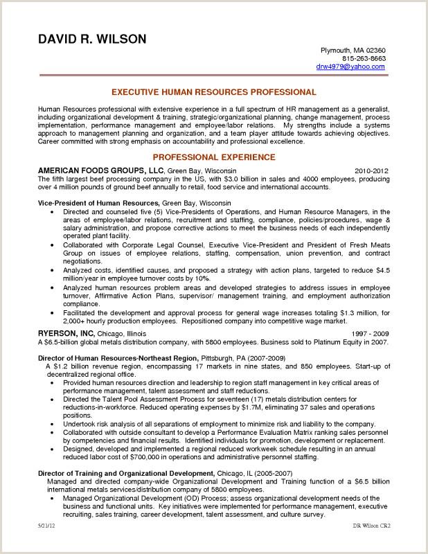 Cv format for Govt Job Resume Job Objective for A Resume