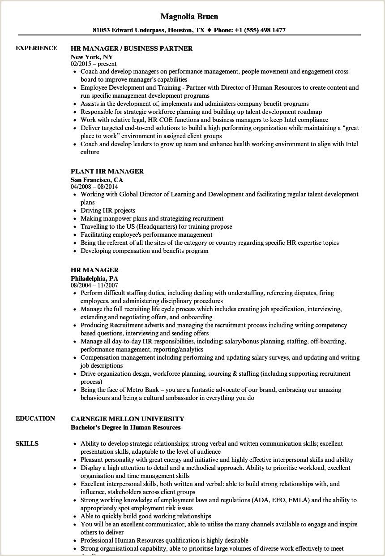 Cv Format For Gulf Job Hr Manager Resume Samples