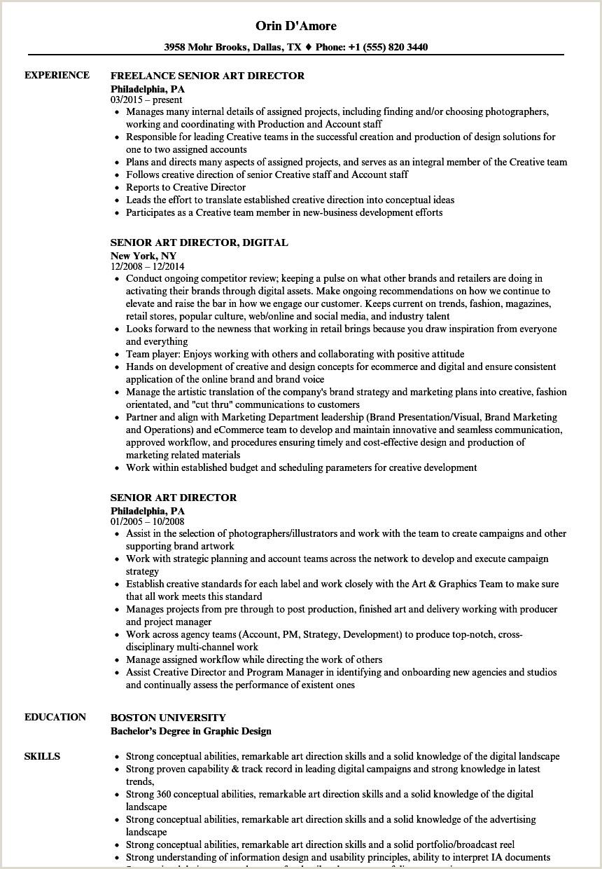 Cv Format For Holiday Jobs Senior Art Director Resume Samples