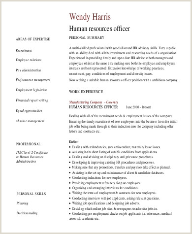 Cv Format For Hr Job Sample Professional Summary Resume 8 Examples In Pdf