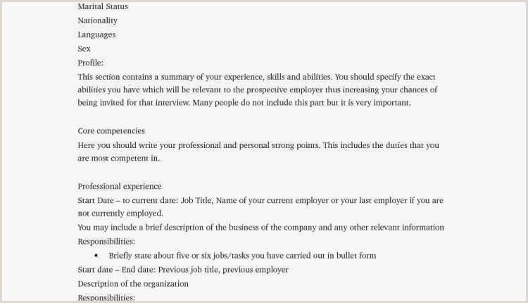 Cv Format For Job 2019 Exemple De Cv Master Magnifique Personal Profile Template