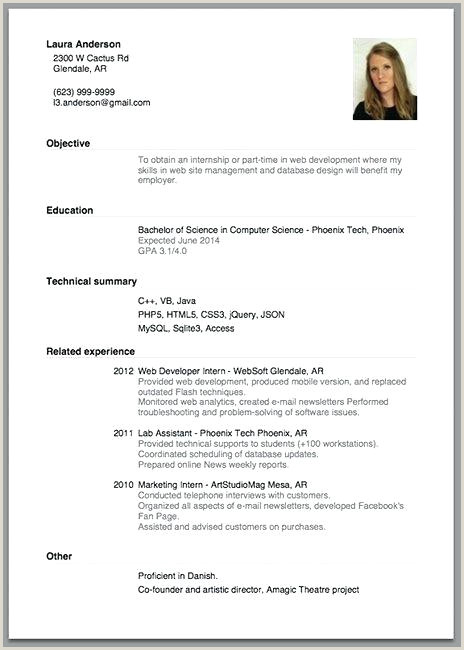Cv format for Job Application In Bangladesh Job Application Resume Template