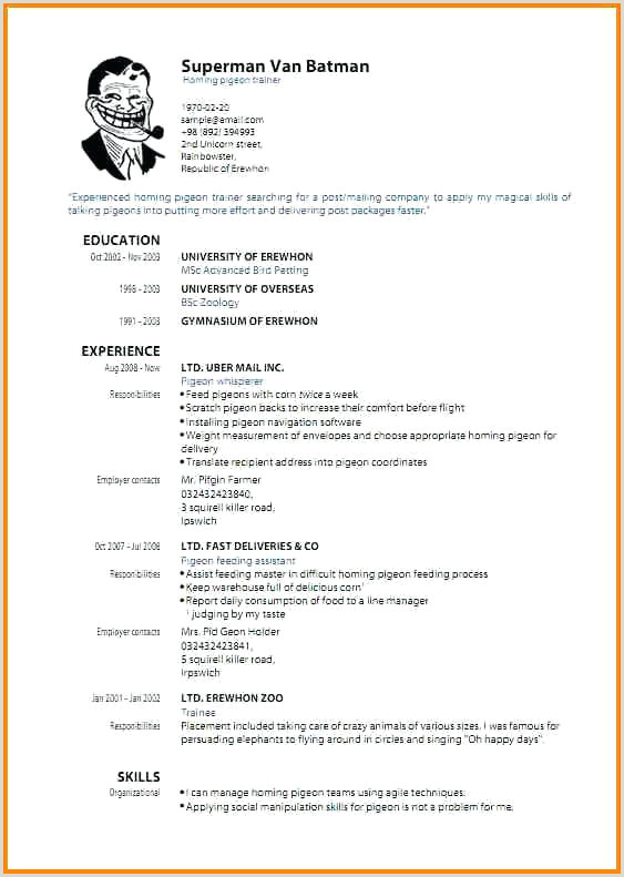 Cv Format For Job Application In Kenya Resume Samples Pdf Best Resume Teenager First Job Template