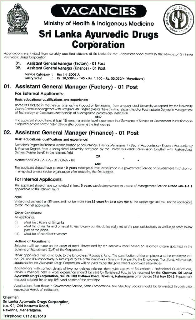 Cv format for Job Application Sri Lanka Job Resume Template Pdf