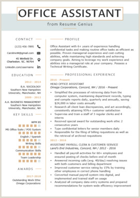 Cv format for Job Bd Human Resources Hr Resume Sample & Writing Tips