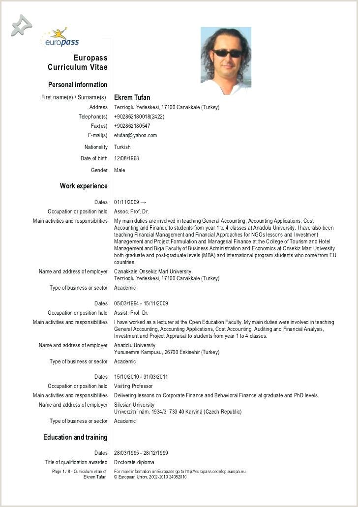 Cv Format For Job Docx Europass Cv Template Doc European Format Docx – Lotusdigital