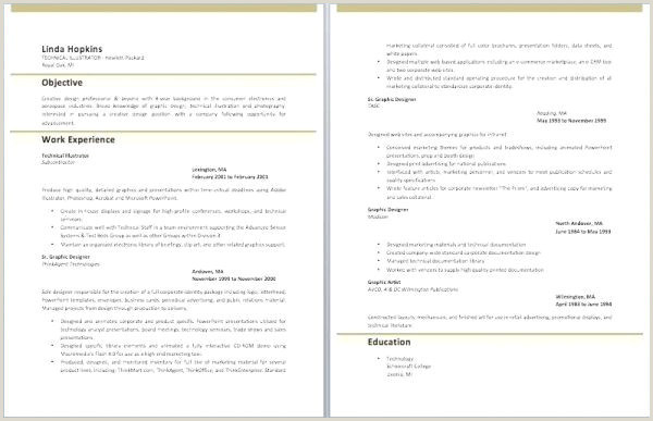 Cv format for Job Experience Cv original Word Op4 format Cv Sample Free Cv Template Word