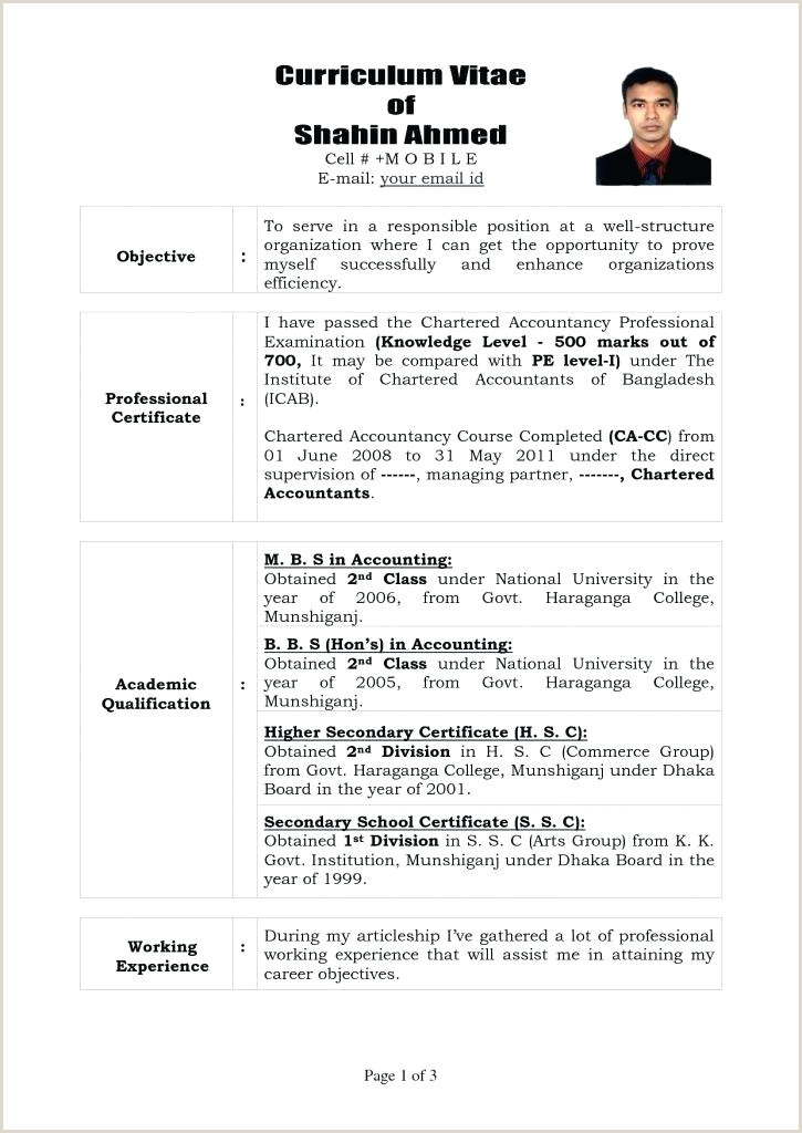 Cv Format For Job In Bangladesh Chartered Accountant Cv Template – Kidzmagz