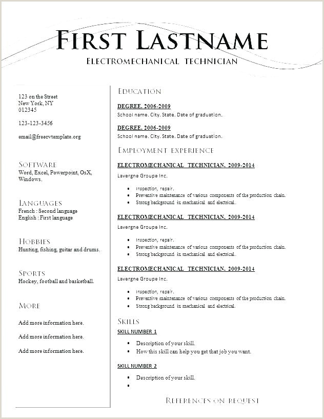 Standard Resume Template Free Download Standard Cv Template