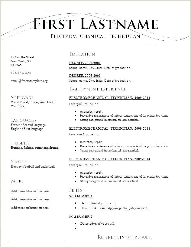 Standard Resume Template Free Download Standard Cv Template
