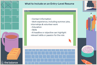 Entry Level Resume Examples and Writing Tips