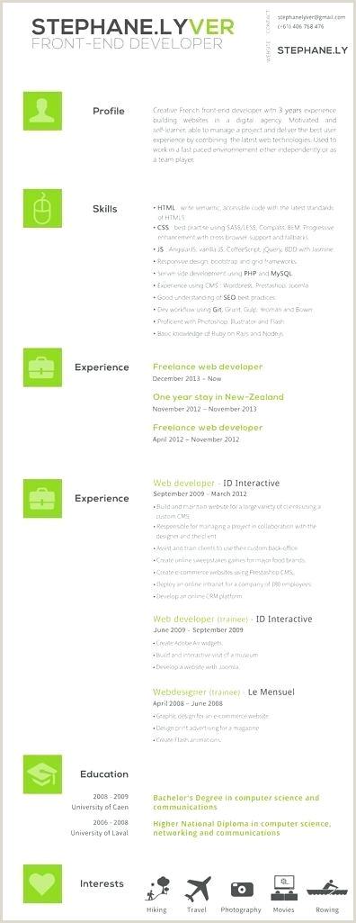 Freelance Developer Sample Resume Examples Junior Web Cv