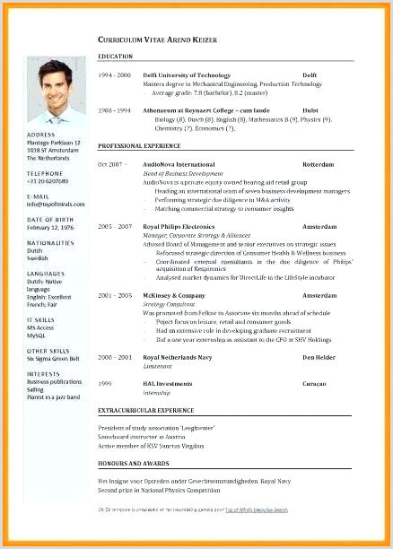 Resume Format For Job Application Example Resume To Apply