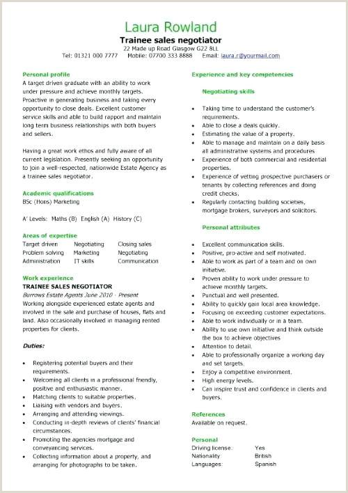 Cv Format For Job In Nigeria Marketing Cv Template