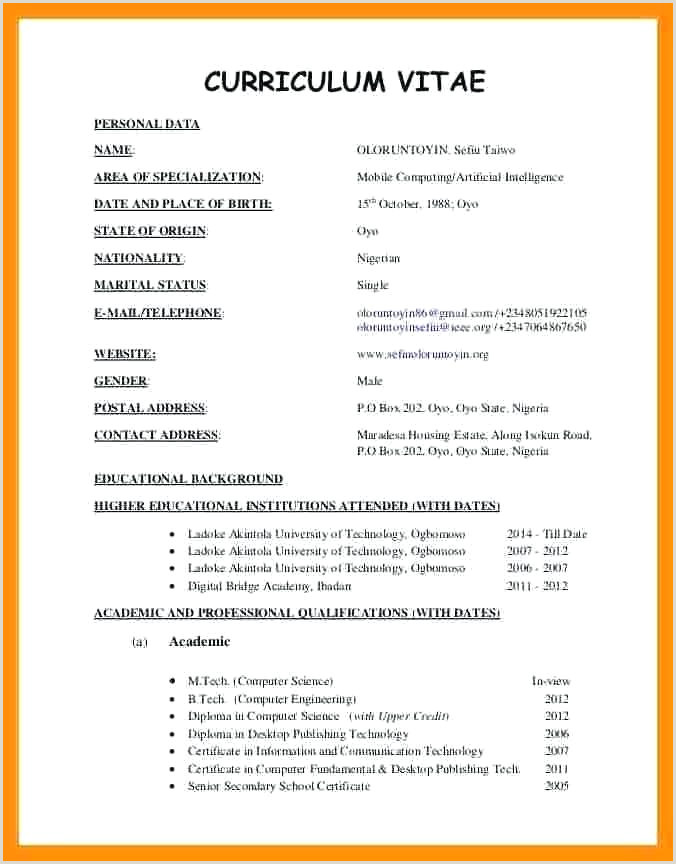 Cv Format For Job In Nigeria New Cv Template