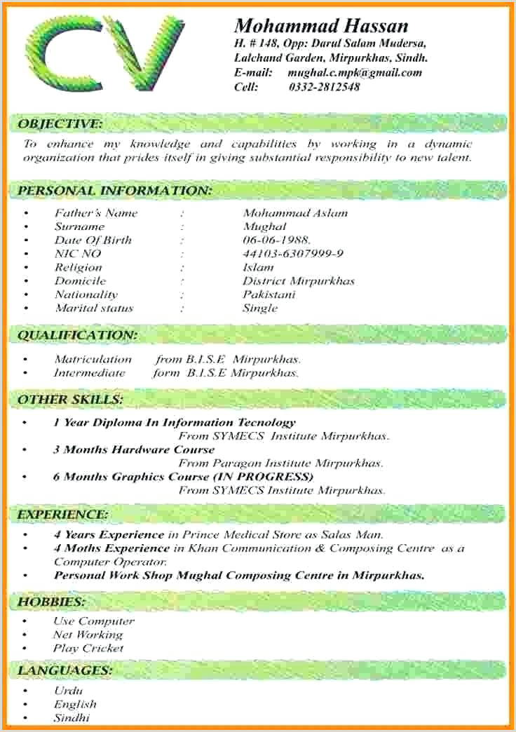 Cv format for Job In Pakistan Latest Resume Templates Word Cv Free Download 2019 format