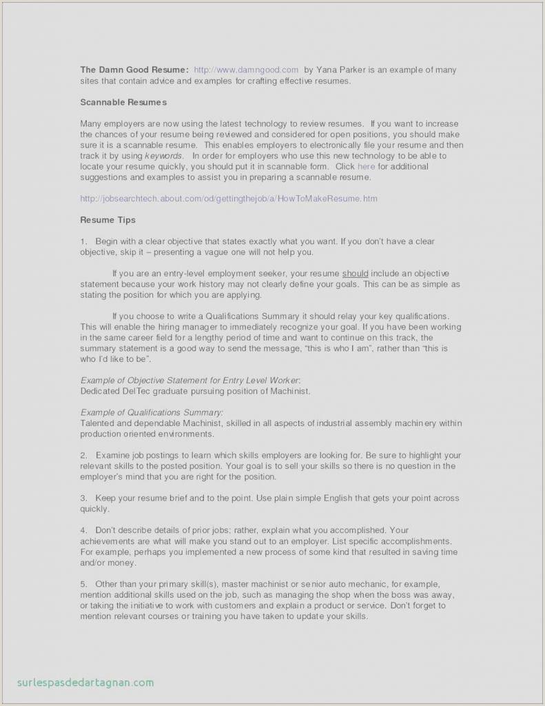 Cv Format For Job In Word Cv Lettre Type Ibm Resume – Savantjournals