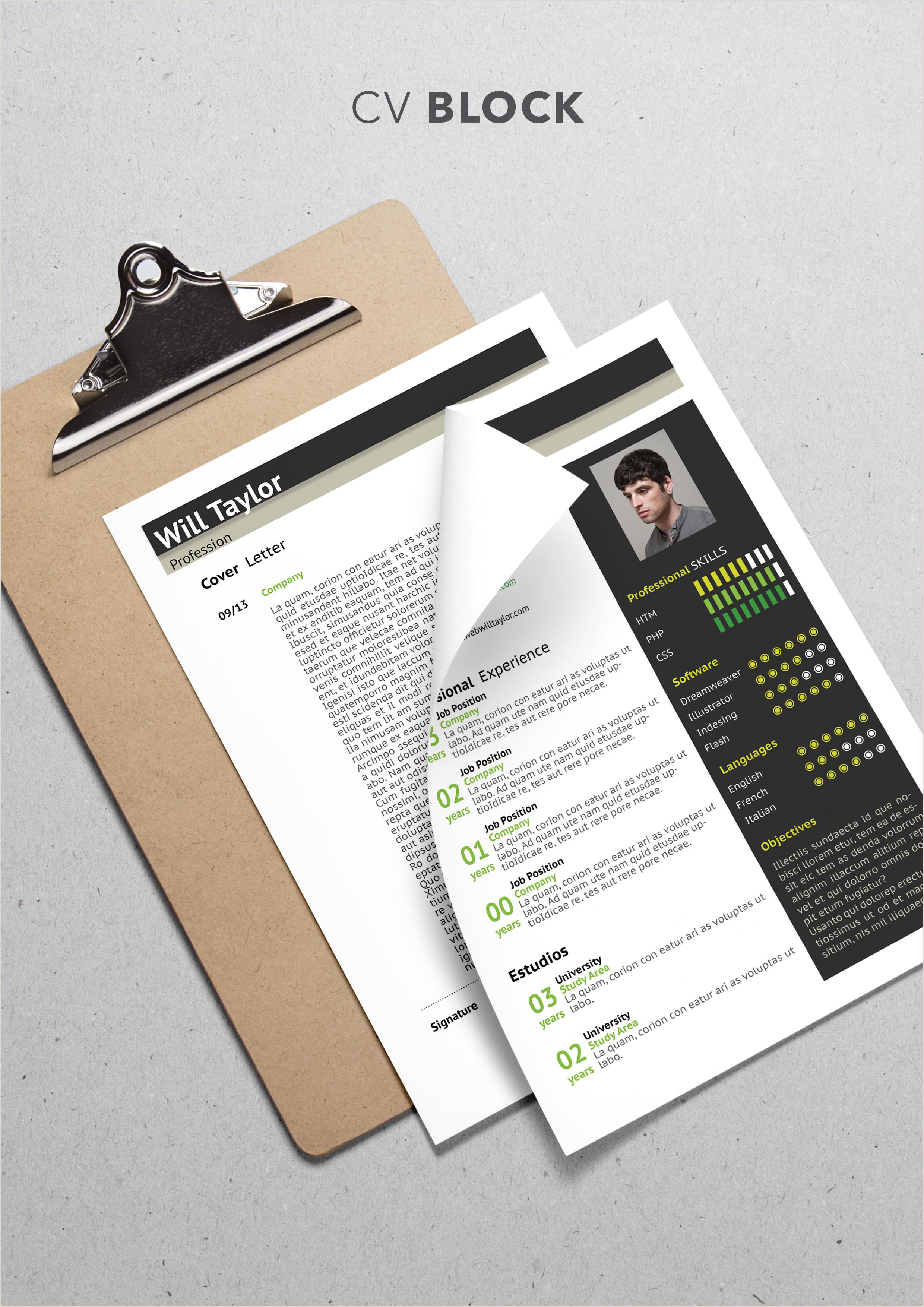 Cv format for Job Interview Block Cv Template