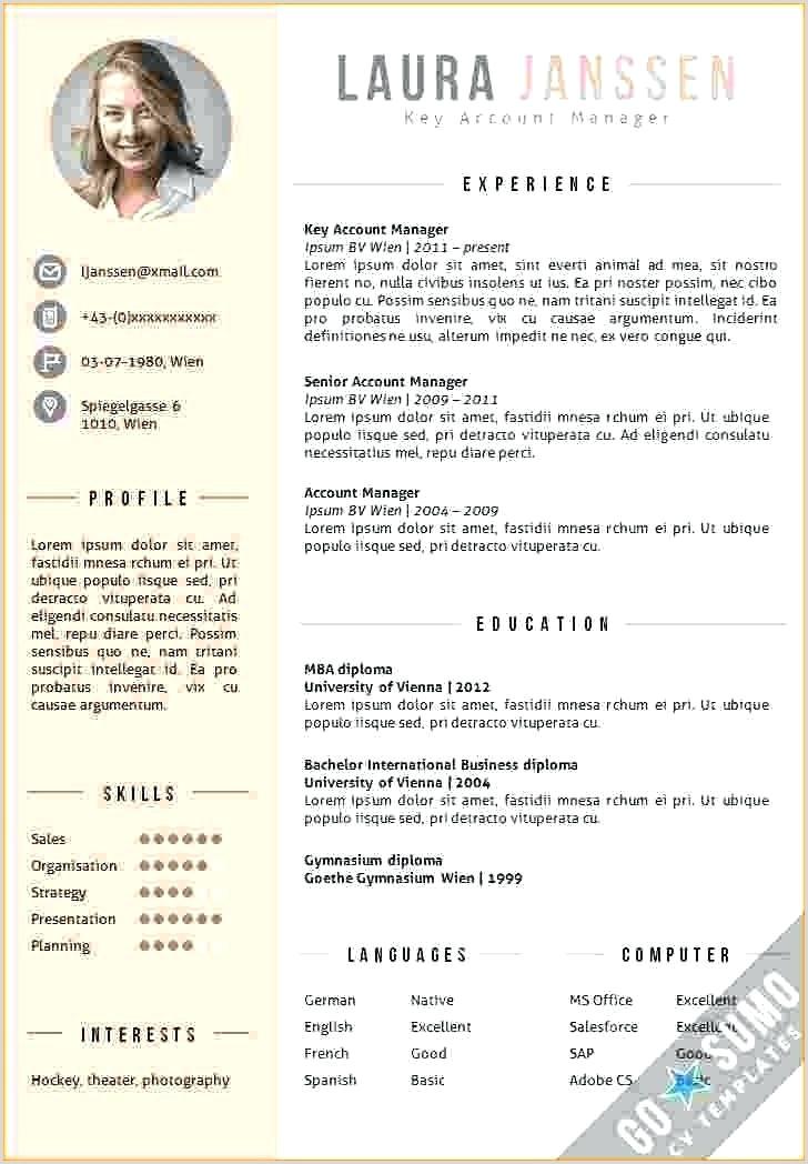 Cv format for Job Pdf Download International format Resume Job In New formats Professional