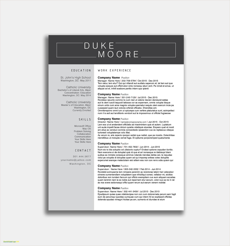 Resume Sample Pdf Format New Sample Resume Format Download