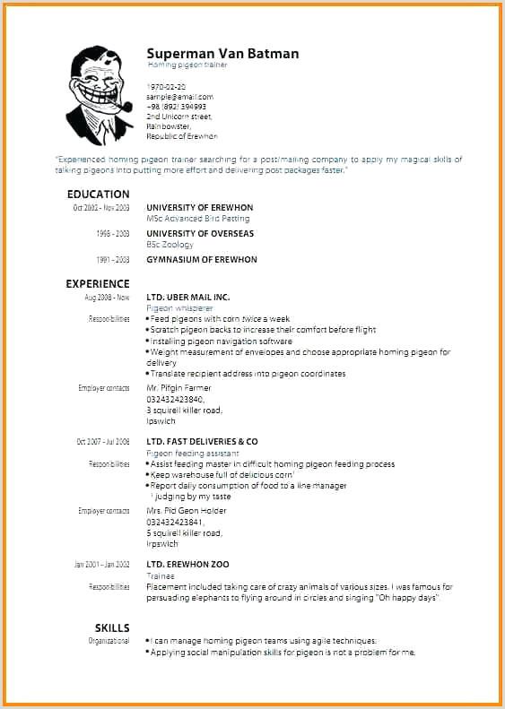 Cv format for Job Pdf Free Download Cv En Garbarino