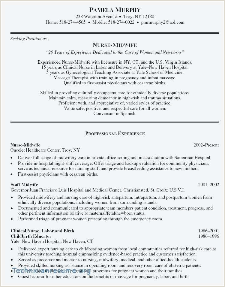 Cv Format For Job Resume Examples Us Style Beautiful Qualifications For Resume